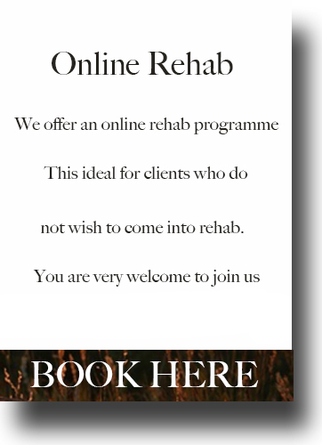 drink and drugs online rehab